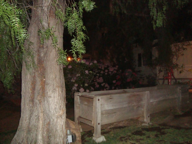 "The flower garden in the backyard of the Waverly House, the reported ""Most Haunted House in America"".  Photo taken during the ghost tour with Old Town's Most Haunted.  Excellent Tour if you're ever in San Diego!  Can you find the orb in this photo?"
