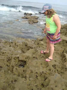 Aurora enjoying all the little creatures in the tide pools