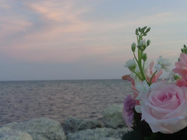 FlowersAtSunset9